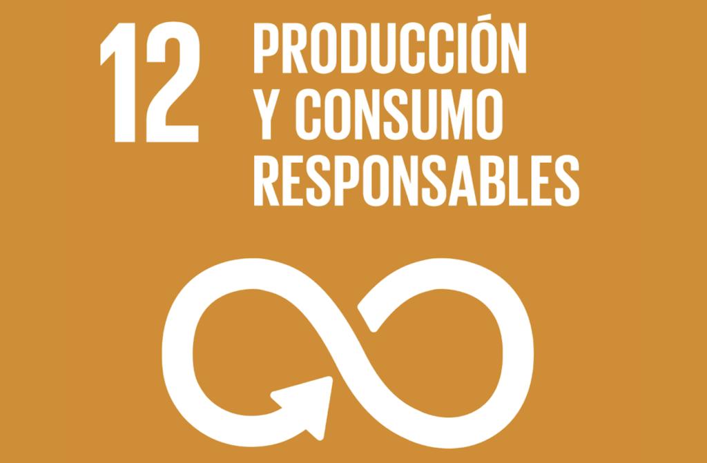 Objetivo 12 ODS Agenda 2030 | Produccion y Consumo Responsables
