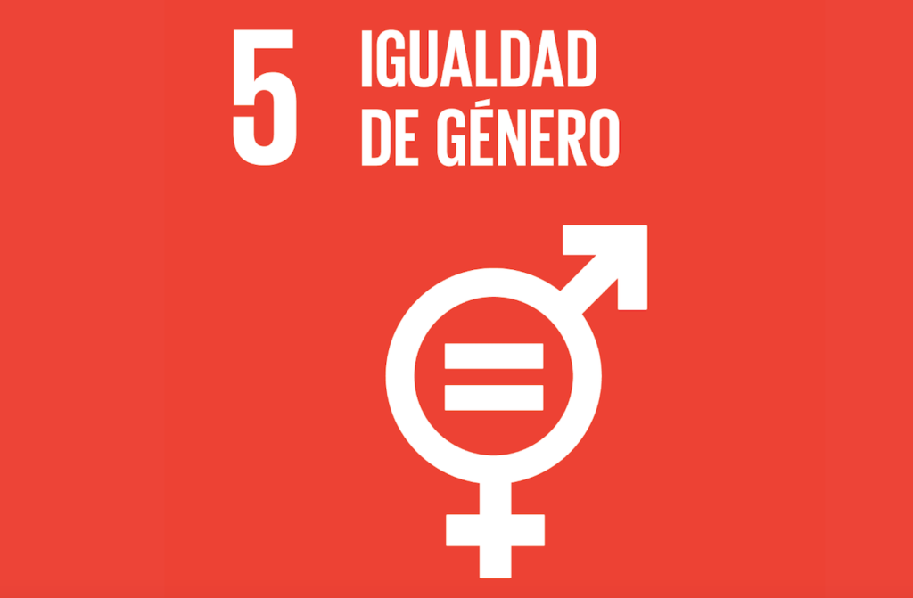 Objetivo 5 ODS Agenda 2030 | Igualdad de Género
