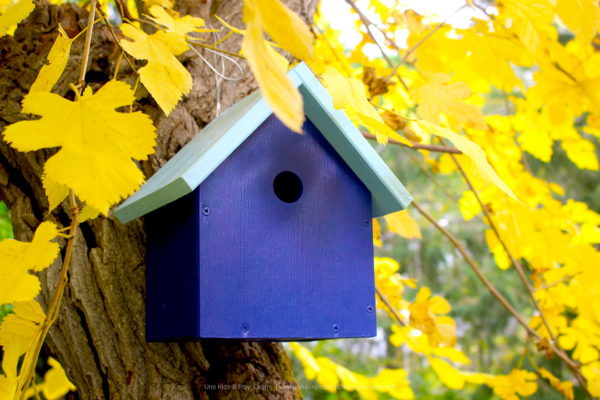 Casa Nido Azul